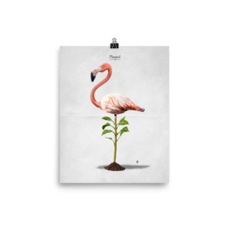 Planted (Animal Illustration) Art Print Poster