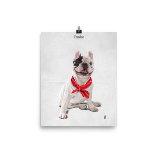 Frenchie (Animal Illustration) Art Print Poster