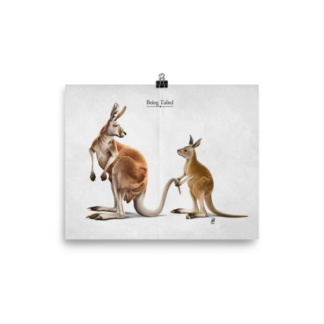 Being Tailed (Animal Illustration) Art Print Poster