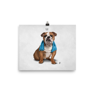 Bull (Animal Illustration) Art Print Poster