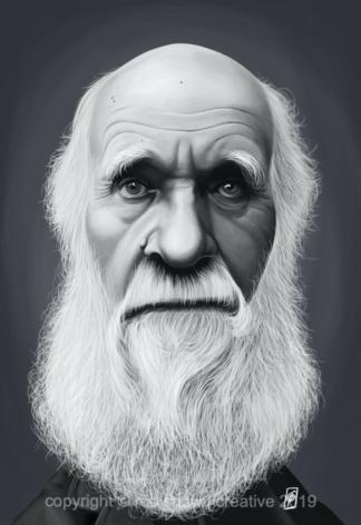 Celebrity Sunday - Charles Darwin