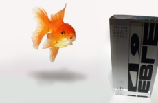 EBGE…and the goldfish came second!