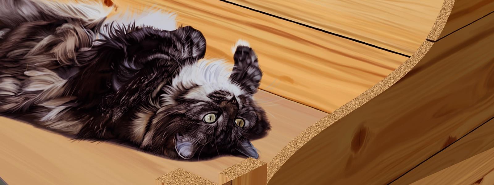 Cat Detail