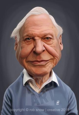Celebrity Sunday - David Attenborough